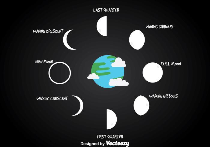 Moon Phase With Earth Vector Download Free Vector Art Stock
