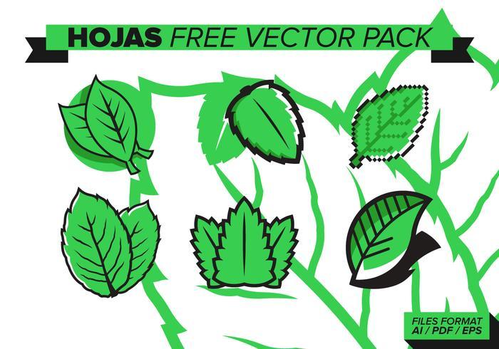 Hojas Free Vector Pack