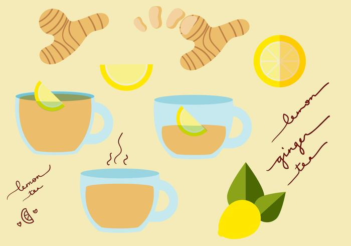 Ginger Tea Vector Set
