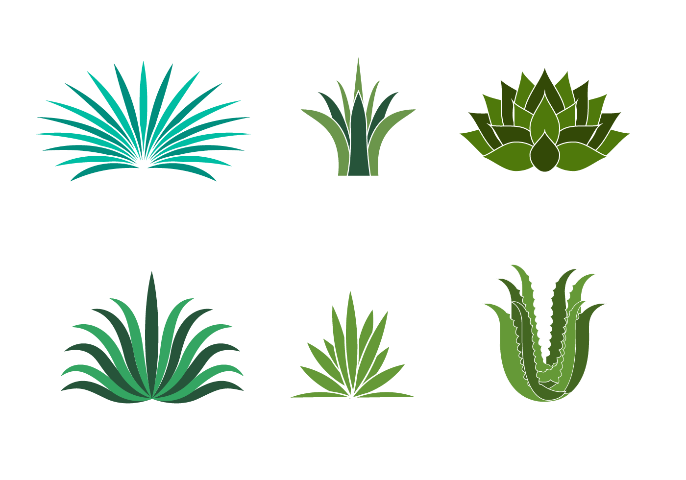 Free Maguey Vector - Download Free Vector Art, Stock Graphics & Images Unique Flower Tattoos