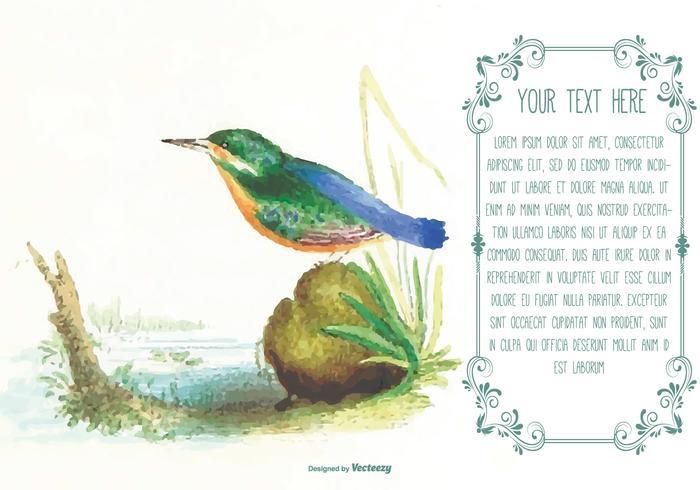 Schöne Aquarell-Vogel-Text-Schablone - Kostenlose Vektor-Kunst ...