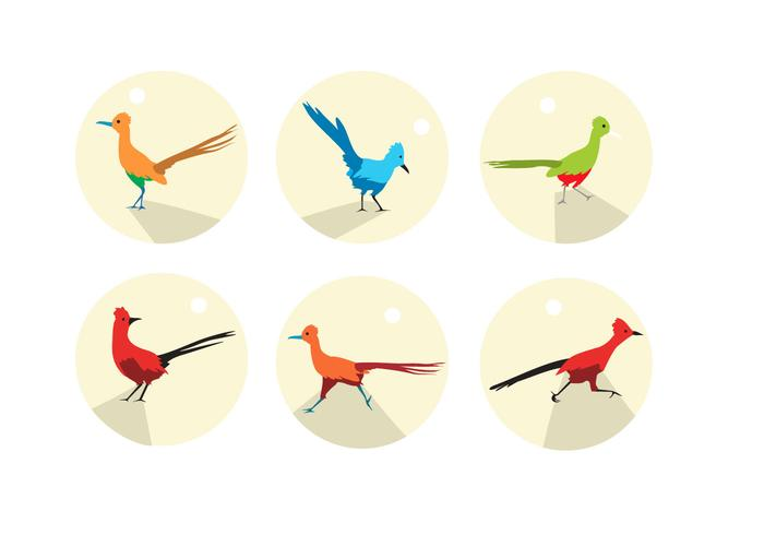 Roadrunner Icons Vector