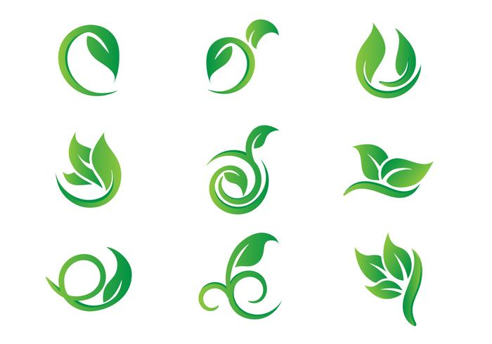Leaf Hojas Logo Vectors