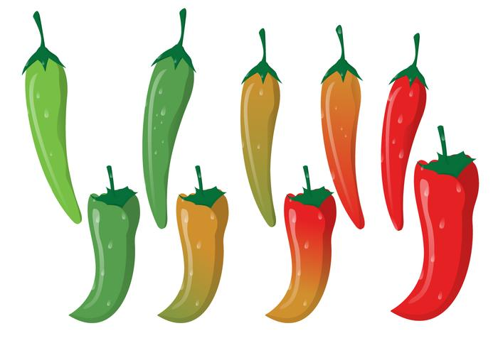 Red Hot Chili With Green Curved Stalk