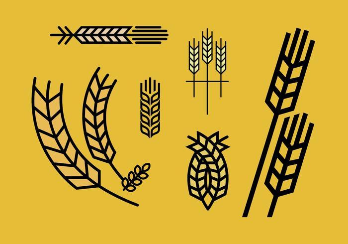 Wheat stalk vector set 2