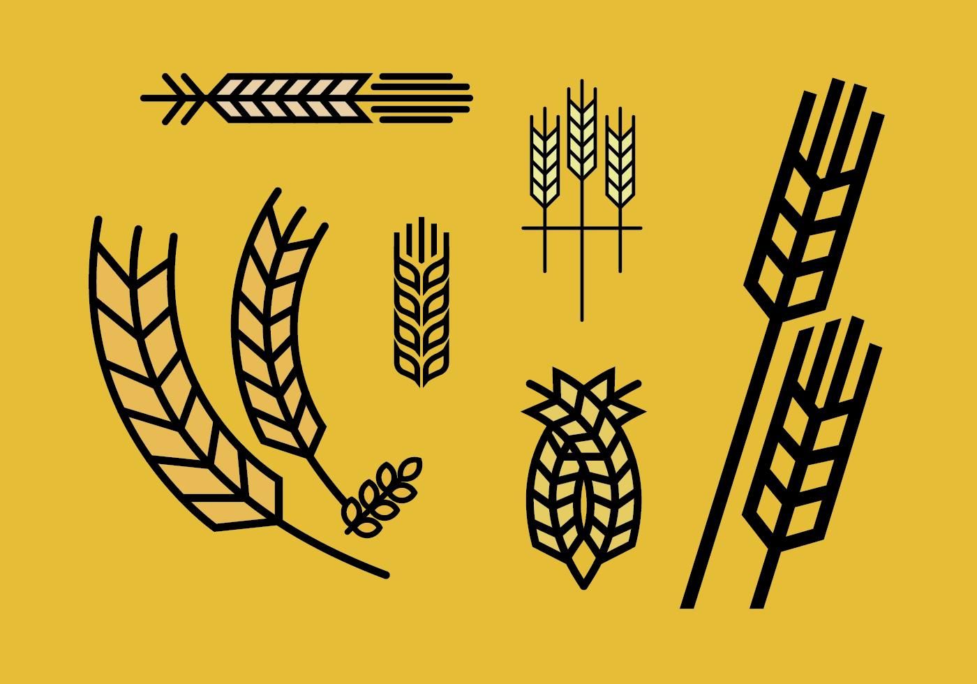 Wheat stalk vector set...