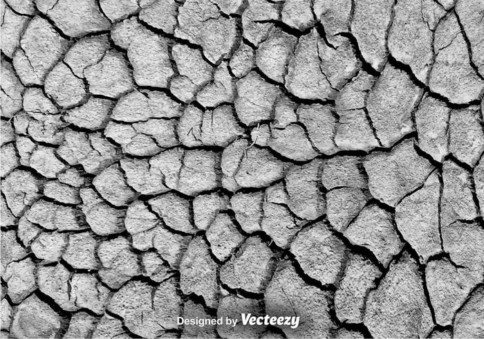 Vector Eroded Texture Cracked Background
