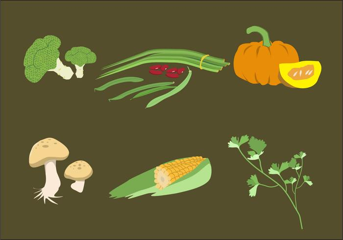 Vegetable Illustration Vector