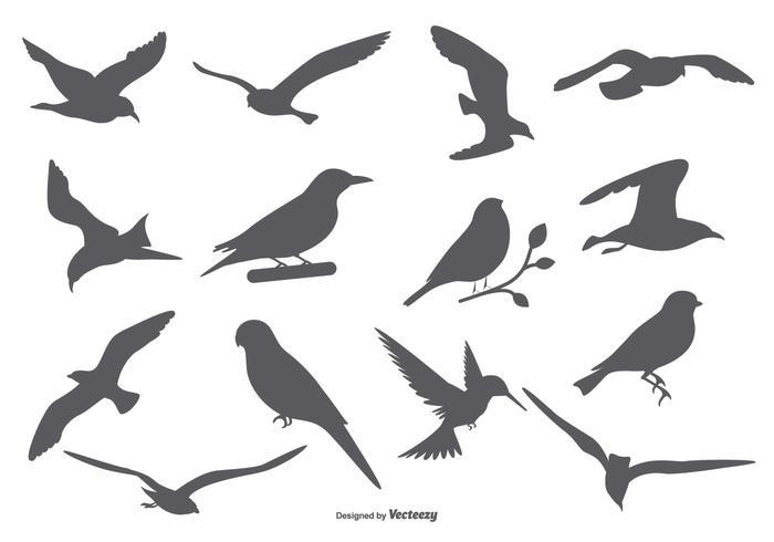 Bird Vector Silhouettes