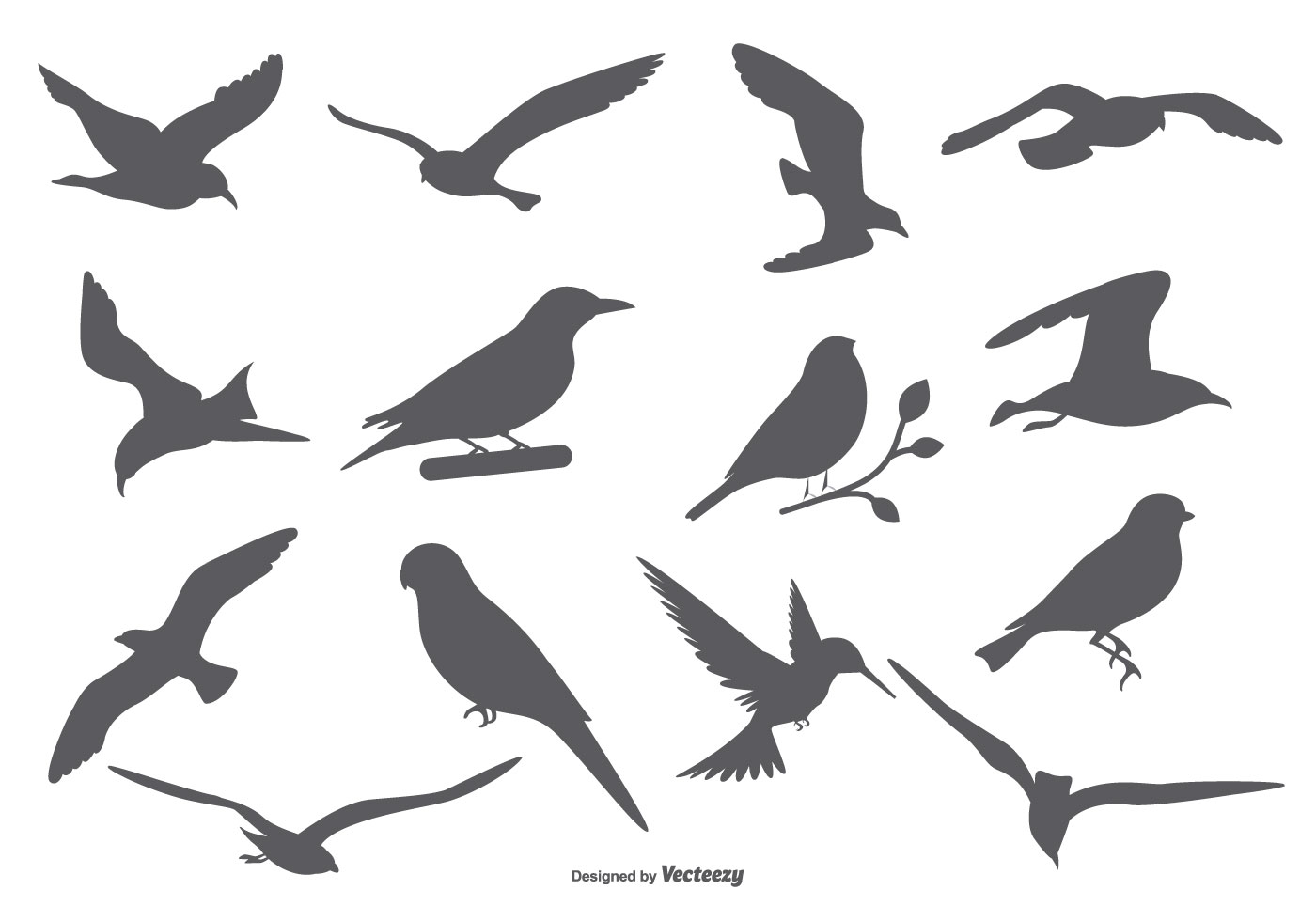 Bird Vector Silhouettes - Download Free Vector Art, Stock Graphics & Images