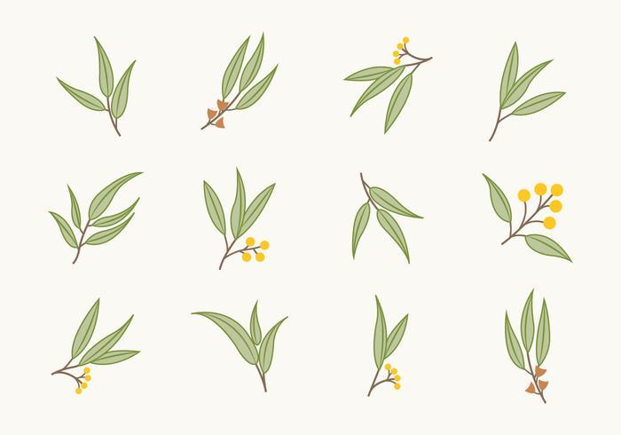 Freie flache Eukalyptus Icons vektor
