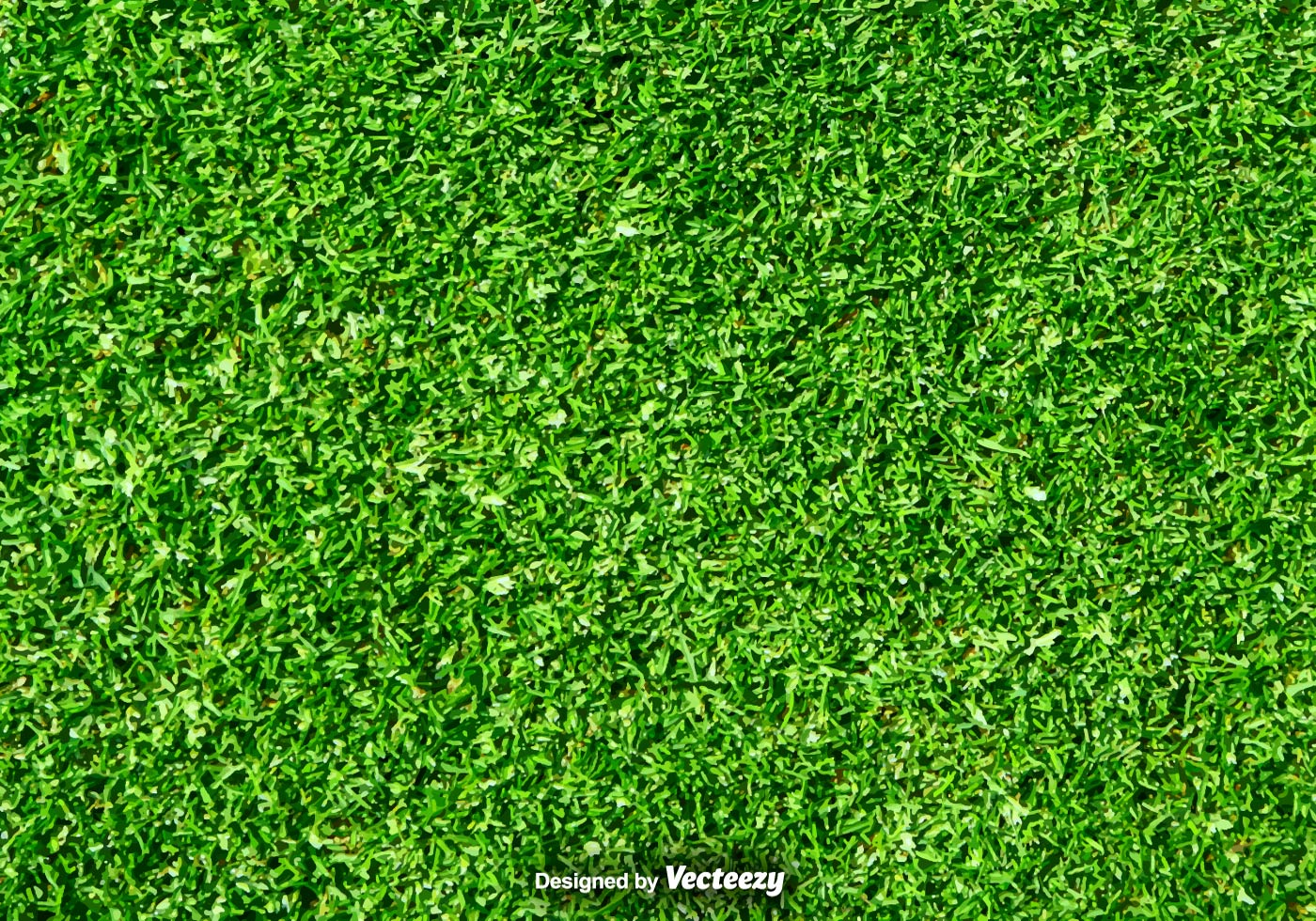 Lawn Nature Green Grass Vector Background Download