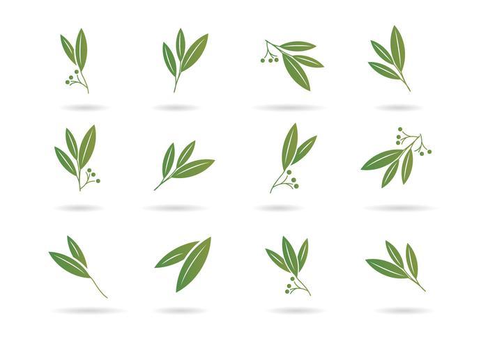 Free Eucalyptus Icons