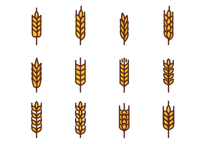 wheat vector download free vector art stock graphics images rh vecteezy com wheat vector free wheat vector psd