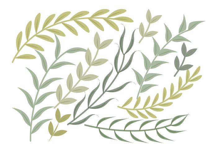Vector Green Branches Set