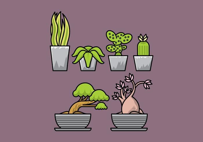 Plantes vectorielles