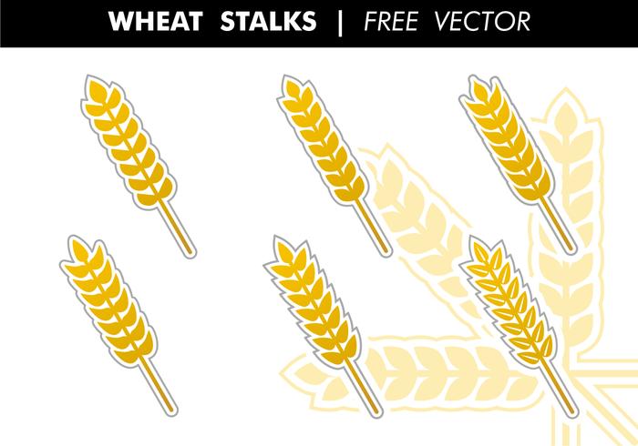 Vetor de tallos de trigo livre
