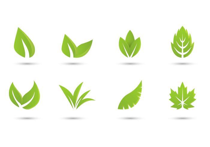 Collection gratuite Logo du logo Hojas