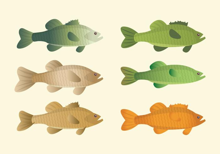 Vector Fishes Collection