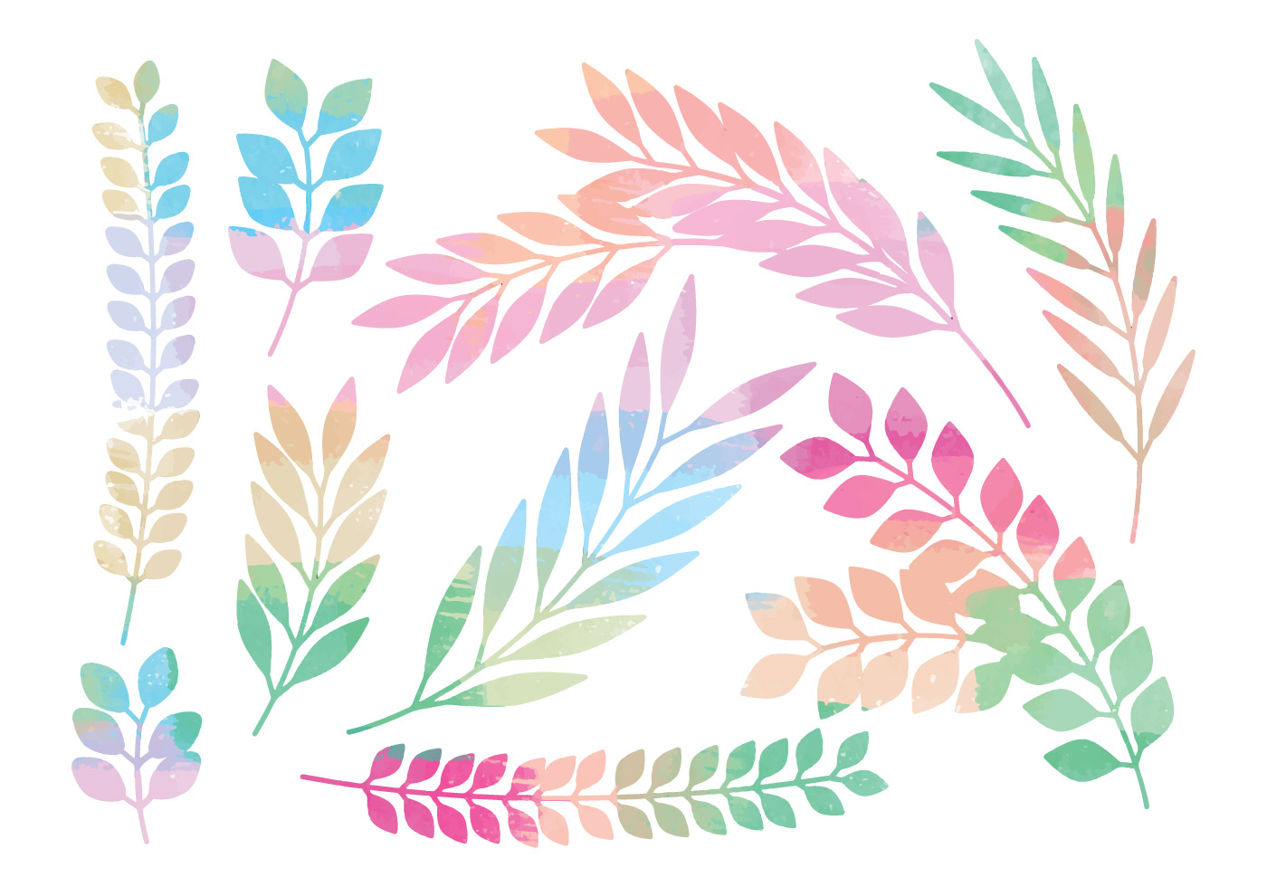 Colorful Vector Branches Set Download Free Vectors