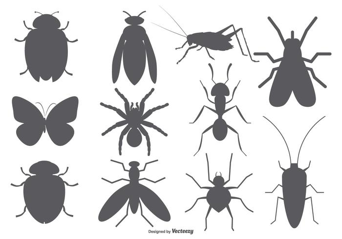 Insect Vector Shapes