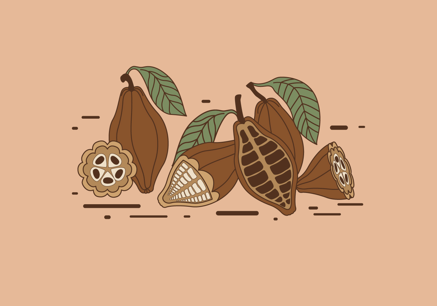 Cacao Tree Free Vector Art 18 Free Downloads