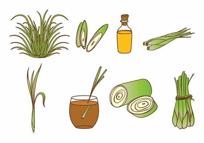 Lemongrass Icon Set vector
