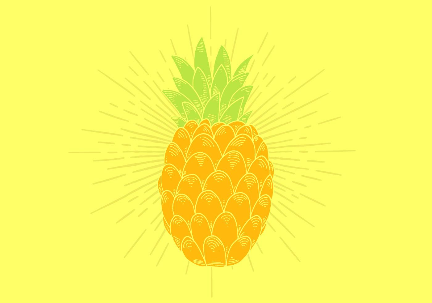 Pineapple Vector - Download Free Vector Art, Stock ...