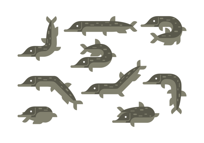 Pike Vector Icons