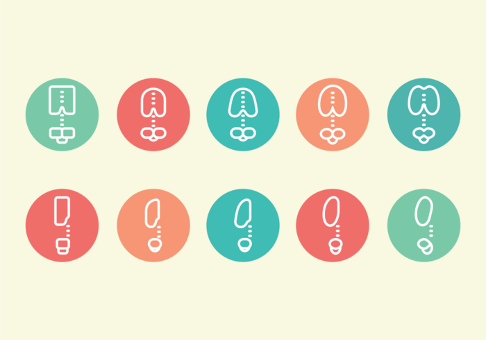 Ribcage Pictogram Icons