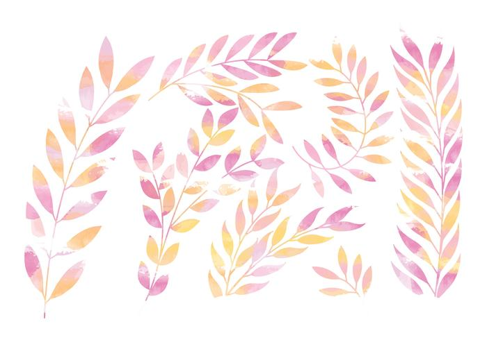 Vector Pink Floral Branches