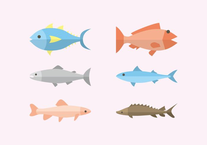 Flat Fish Illustration Vector
