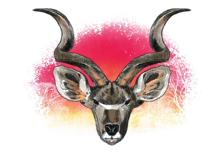Decorative Kudu Vector