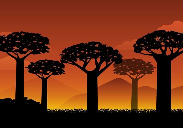 Free Silhouette Baobab Background Vector