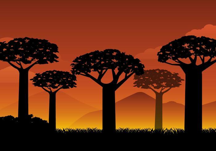 Vector libre de la silueta del baobab de la silueta