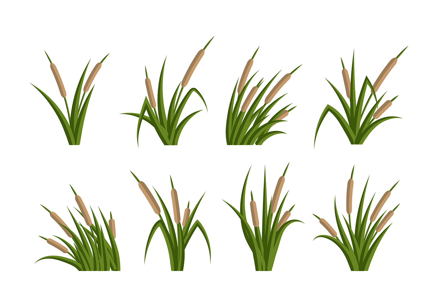 cattails vector 349 free downloads rh vecteezy com Cattail Coloring Pages Cattails Vector