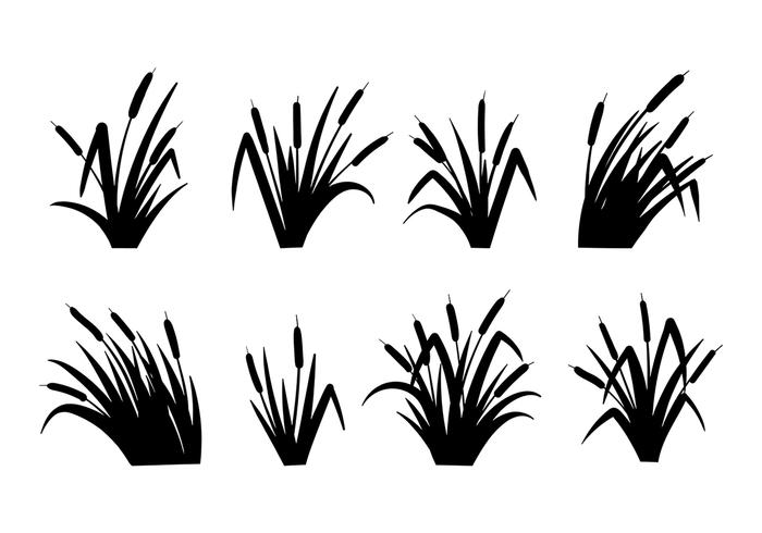 Cattails Vector Black and White