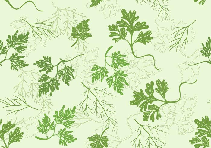 Cilantro vector set