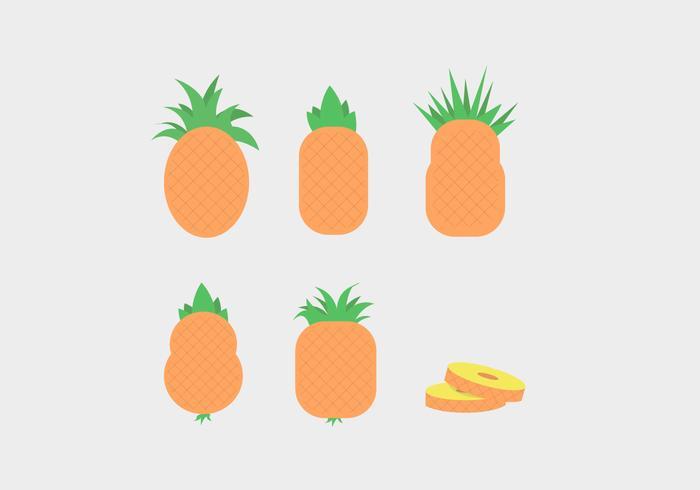 Ananas Vector
