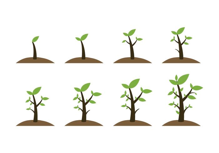 Ícones de plantas de crescimento grátis