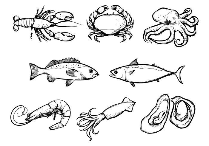 Vettori di frutti di mare