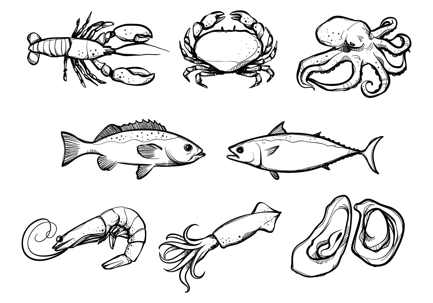 Seafood Vectors - Download Free Vector Art, Stock Graphics & Images