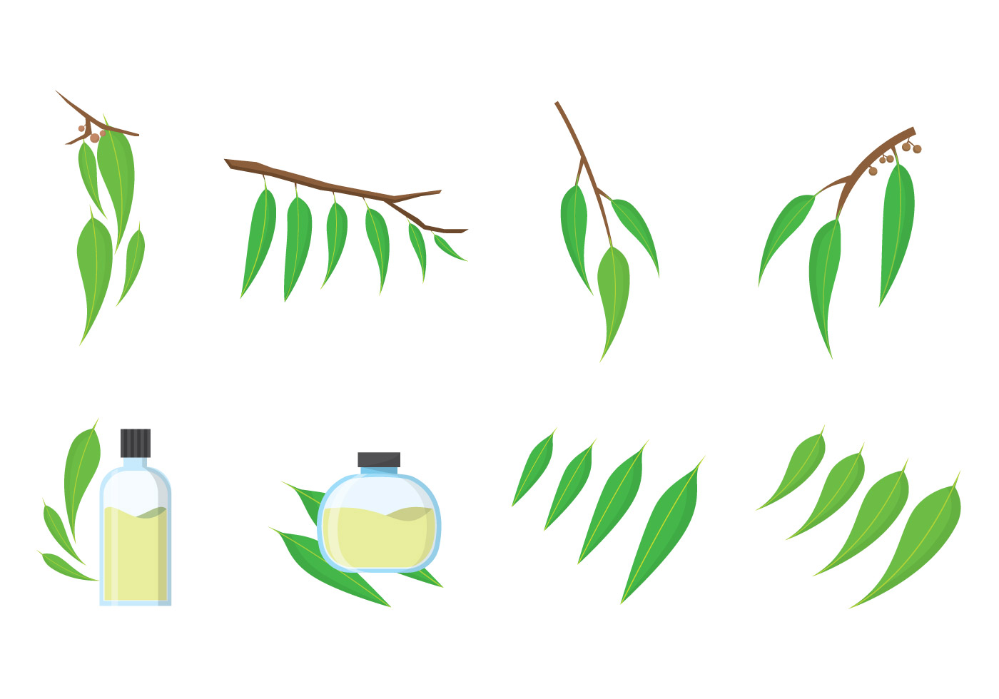 Free eucalyptus vector download free vector art stock for Clipart to download for free