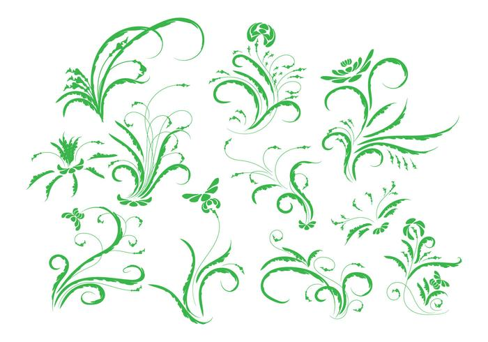 Vintage Floral Ornament Vector