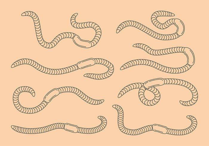 Earthworm icons