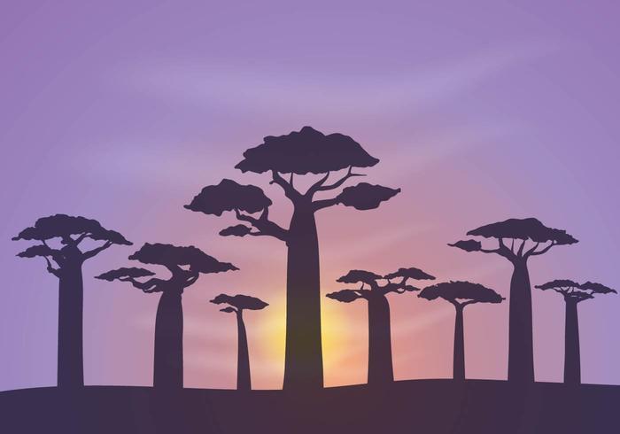 Gratis Baobab Achtergrond Vector