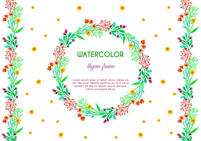 Vector Watercolor Thyme Frame and Border