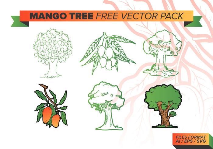 Pacchetto di vettore gratuito albero di mango