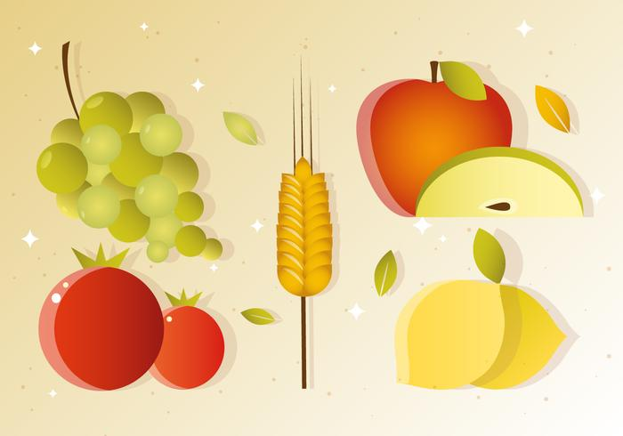 Vector Fall Fruit Harvest