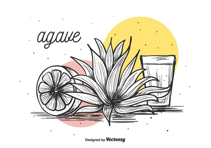 Agave Vector Background